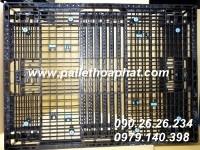 pallet-nhua-mau-den-1100x1400x100mm